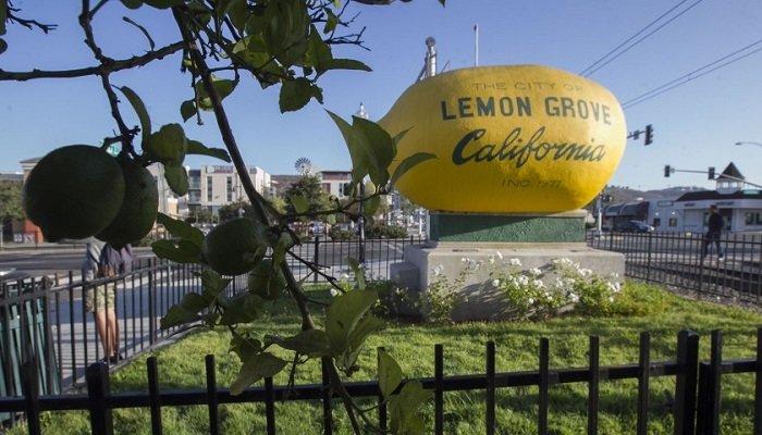 LEMON GROVE, CA